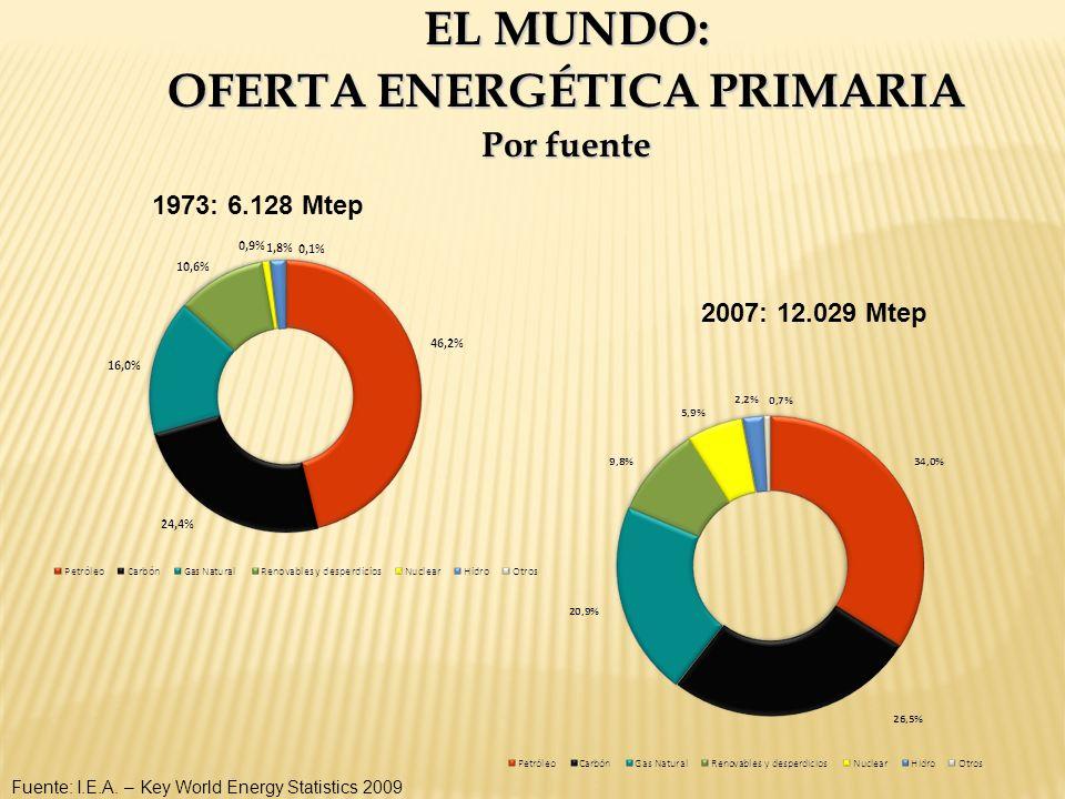 EL MUNDO: OFERTA ENERGÉTICA PRIMARIA Por fuente Fuente: I.E.A. – Key World Energy Statistics 2009 1973: 6.128 Mtep 2007: 12.029 Mtep
