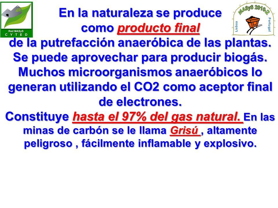 En la naturaleza se produce como producto final de la putrefacción anaeróbica de las plantas.