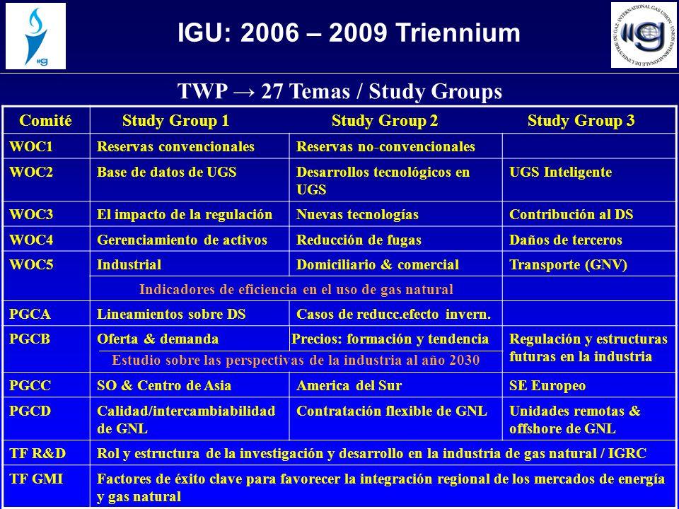 TWP 27 Temas / Study Groups Comité Study Group 1 Study Group 2 Study Group 3 WOC1Reservas convencionalesReservas no-convencionales WOC2Base de datos de UGSDesarrollos tecnológicos en UGS UGS Inteligente WOC3El impacto de la regulaciónNuevas tecnologíasContribución al DS WOC4Gerenciamiento de activosReducción de fugasDaños de terceros WOC5IndustrialDomiciliario & comercialTransporte (GNV) Indicadores de eficiencia en el uso de gas natural PGCALineamientos sobre DSCasos de reducc.efecto invern.