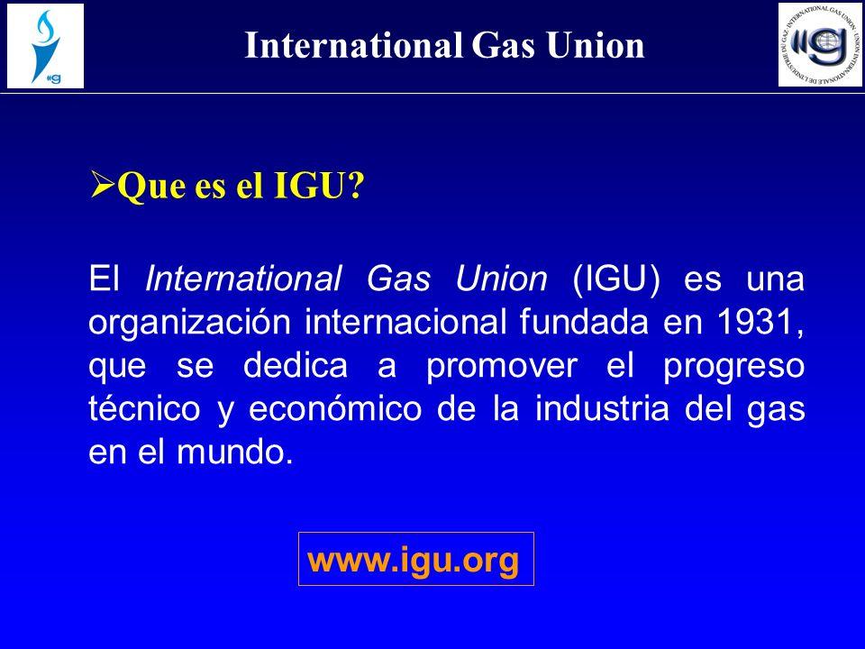 El International Gas Union (IGU) es una organización internacional fundada en 1931, que se dedica a promover el progreso técnico y económico de la ind