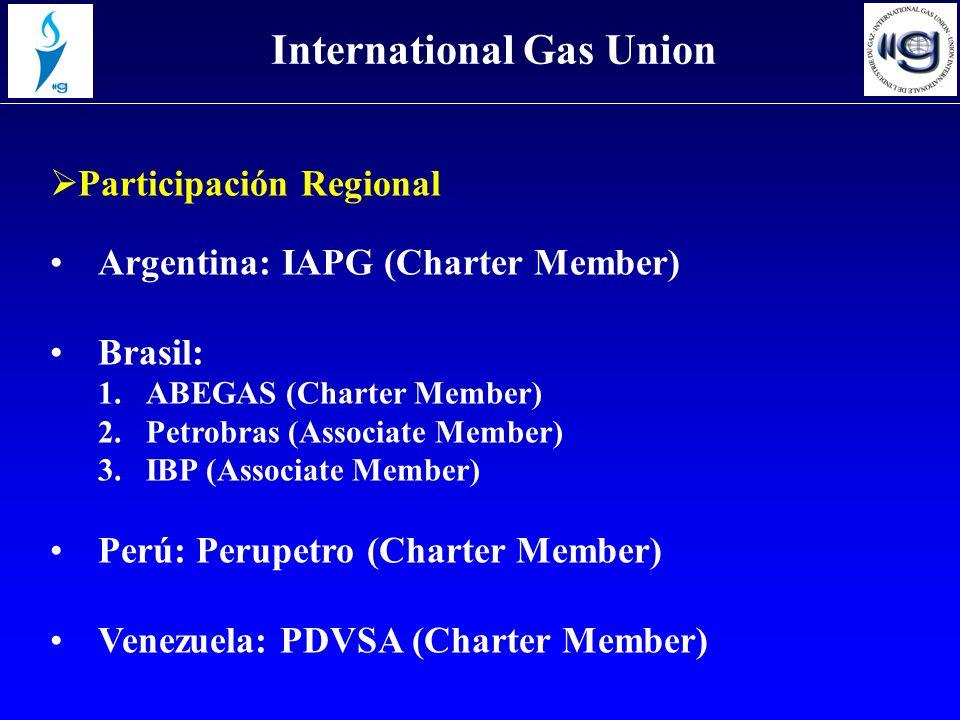 Participación Regional International Gas Union Argentina: IAPG (Charter Member) Brasil: 1.ABEGAS (Charter Member) 2.Petrobras (Associate Member) 3.IBP (Associate Member) Perú: Perupetro (Charter Member) Venezuela: PDVSA (Charter Member)