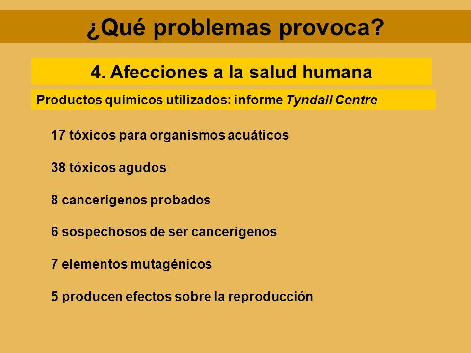 ¿Qué problemas provoca? 4. Afecciones a la salud humana 17 tóxicos para organismos acuáticos 38 tóxicos agudos 8 cancerígenos probados Productos quími