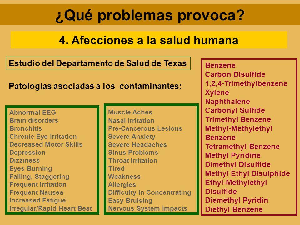 ¿Qué problemas provoca? 4. Afecciones a la salud humana Benzene Carbon Disulfide 1,2,4-Trimethylbenzene Xylene Naphthalene Carbonyl Sulfide Trimethyl
