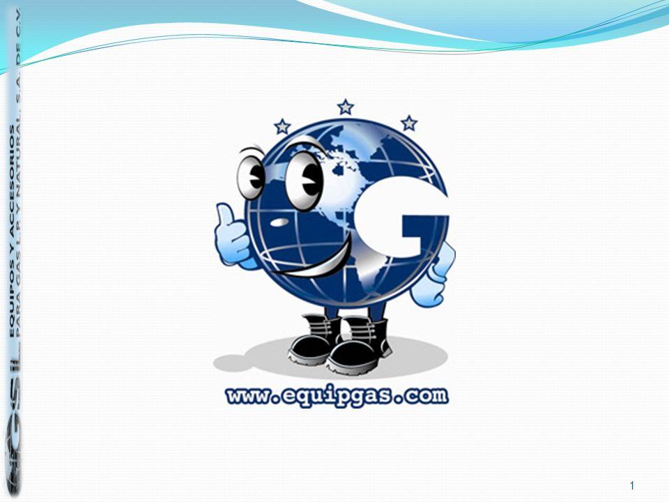 VAPORIZADORES INDUSTRIALES PARA GAS L.P Y SISTEMAS RE RESPALDO (GNS).