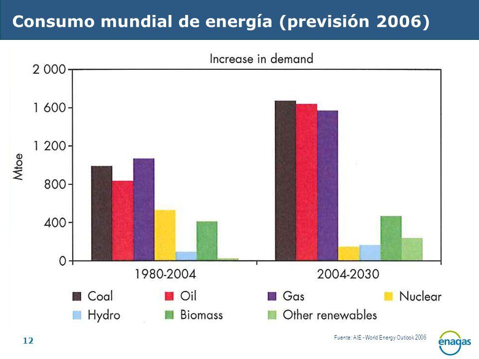 12 Fuente: AIE - World Energy Outlook 2006 Consumo mundial de energía (previsión 2006)