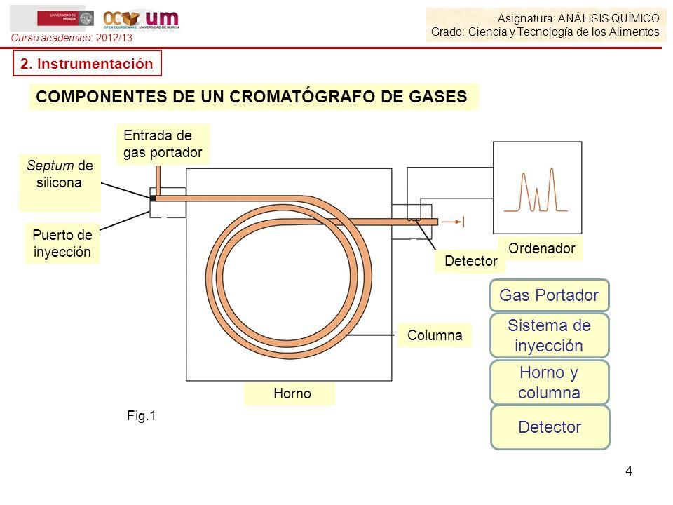 Asignatura: ANÁLISIS QUÍMICO Grado: Ciencia y Tecnología de los Alimentos Curso académico: 2012/13 2. Instrumentación Fig.1 COMPONENTES DE UN CROMATÓG