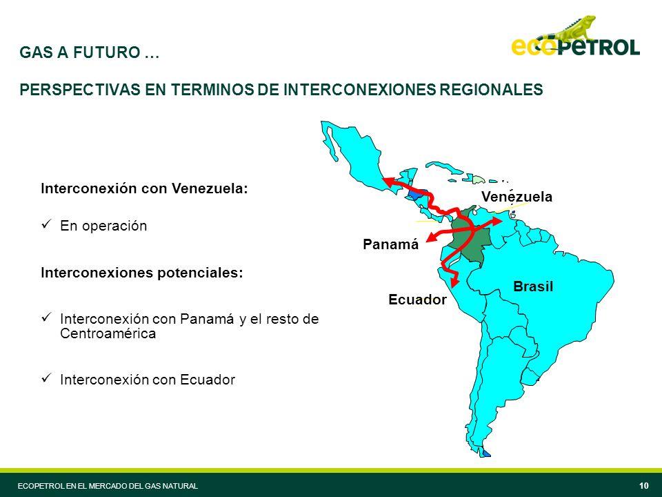 ECOPETROL EN EL MERCADO DEL GAS NATURAL 10 GAS A FUTURO … PERSPECTIVAS EN TERMINOS DE INTERCONEXIONES REGIONALES Venezuela Panamá Brasil Ecuador Interconexión con Venezuela: En operación Interconexiones potenciales: Interconexión con Panamá y el resto de Centroamérica Interconexión con Ecuador