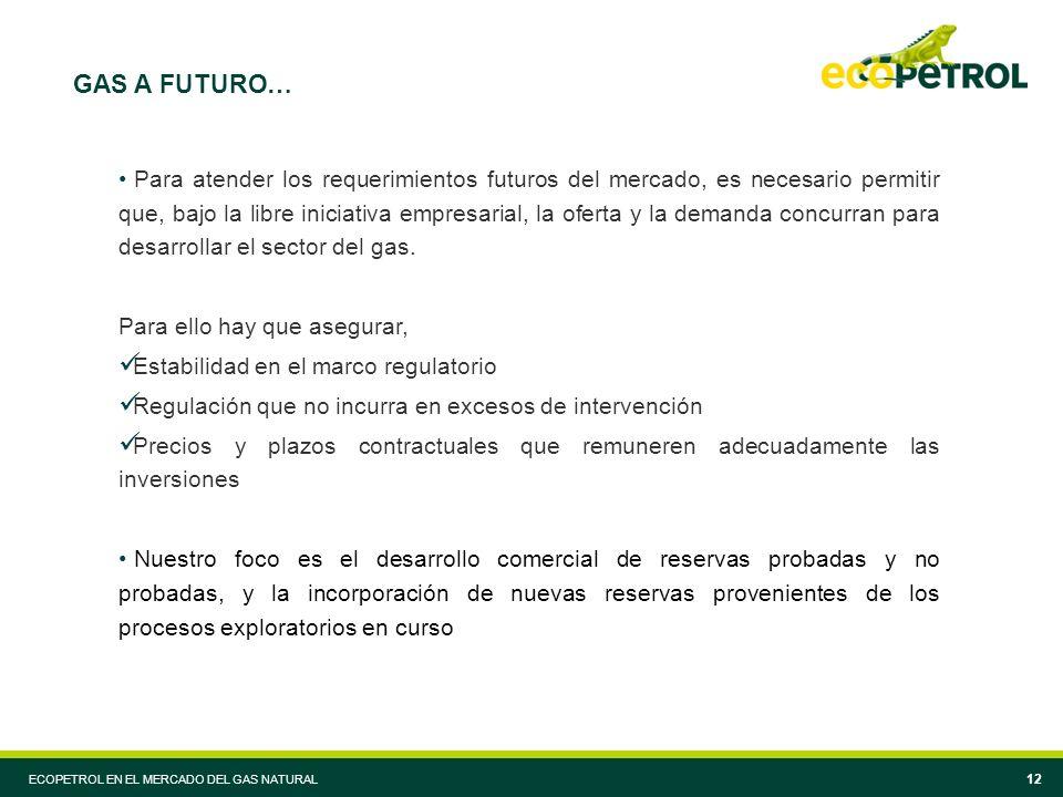 ECOPETROL EN EL MERCADO DEL GAS NATURAL 12 GAS A FUTURO… Para atender los requerimientos futuros del mercado, es necesario permitir que, bajo la libre iniciativa empresarial, la oferta y la demanda concurran para desarrollar el sector del gas.
