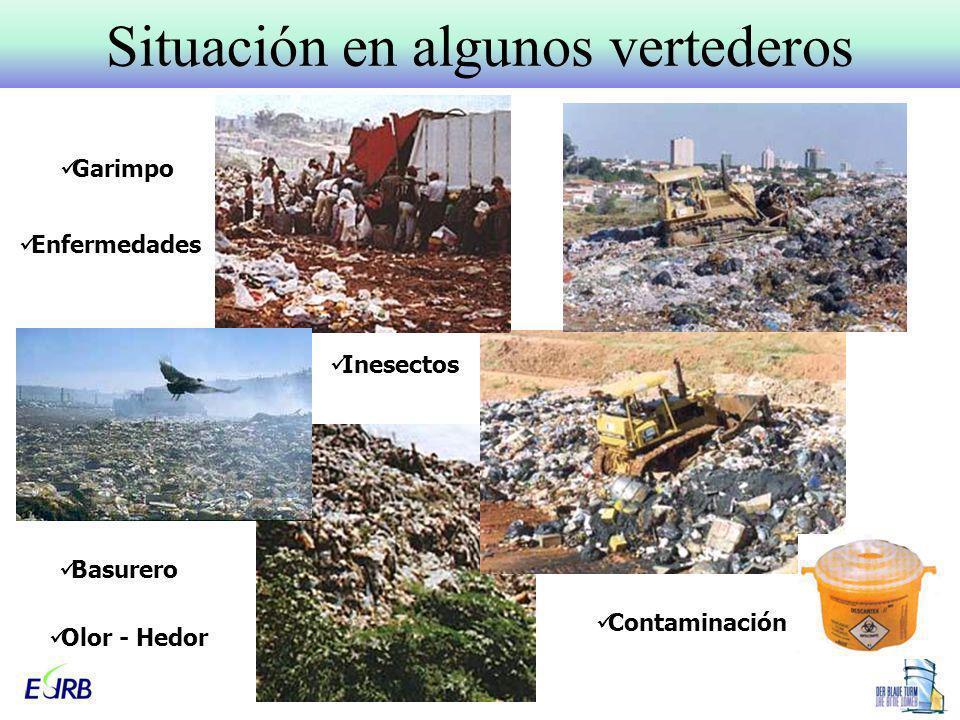 Situación en algunos vertederos Basurero Inesectos Garimpo Enfermedades Contaminación Olor - Hedor