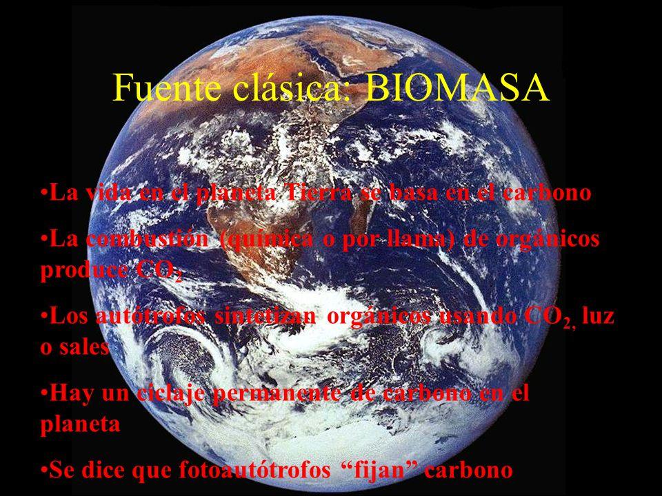 Combustibles típicos CombustiblePoder calorífico superior (Kjoule/kg) Carbón26.500 Petróleo crudo (pesado gravedad específica 1,0) 37.122 Petróleo diesel48.057 Gasolina53.022 Gas natural53.561 Leña pino (seca)20.863 Hidrógeno141.748