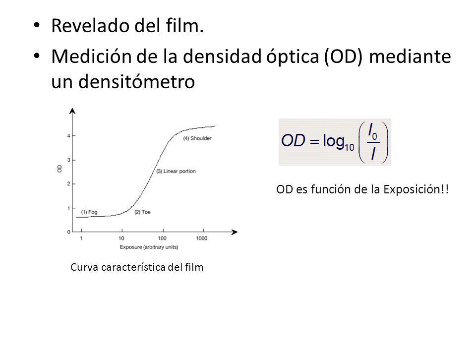 Revelado del film. Medición de la densidad óptica (OD) mediante un densitómetro OD es función de la Exposición!! Curva característica del film