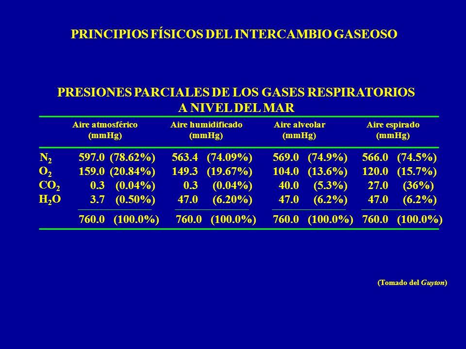 PRINCIPIOS FÍSICOS DEL INTERCAMBIO GASEOSO Aire atmosférico (mmHg) Aire humidificado (mmHg) Aire alveolar (mmHg) Aire espirado (mmHg) N2N2 O 2 CO 2 H