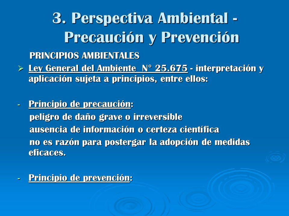 3. Perspectiva Ambiental - Precaución y Prevención PRINCIPIOS AMBIENTALES PRINCIPIOS AMBIENTALES Ley General del Ambiente N° 25.675 - interpretación y