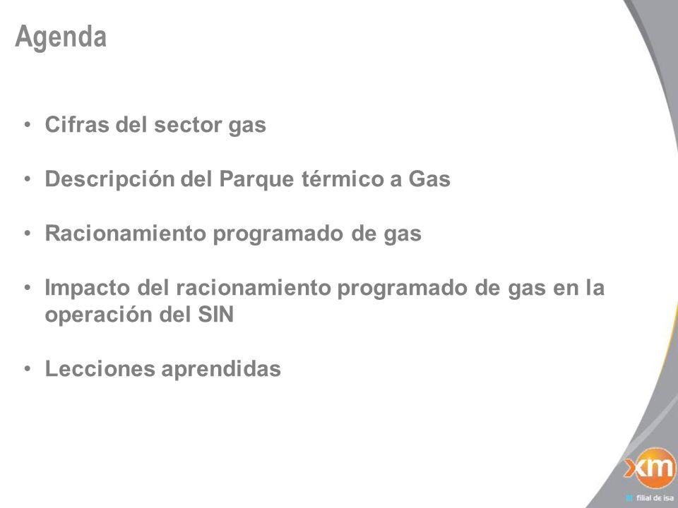 Asignación de Gas por sectores - Costa 13 Fin Gen Térmica por Seguridad