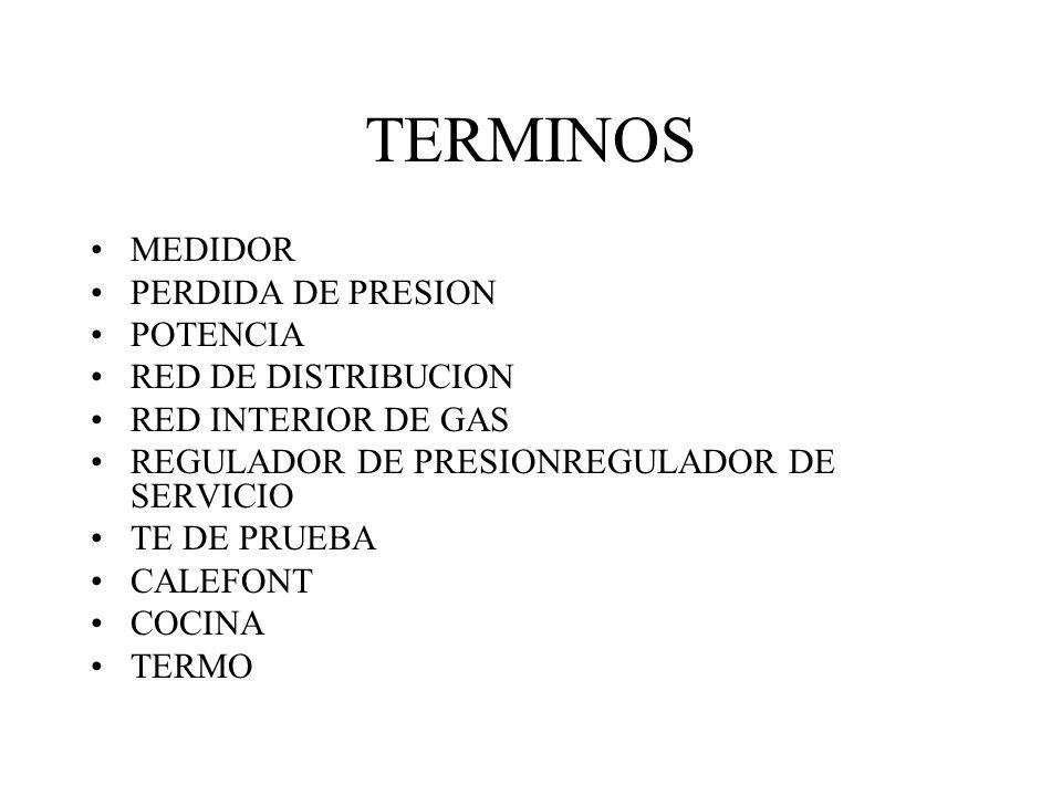 TERMINOS MEDIDOR PERDIDA DE PRESION POTENCIA RED DE DISTRIBUCION RED INTERIOR DE GAS REGULADOR DE PRESIONREGULADOR DE SERVICIO TE DE PRUEBA CALEFONT C