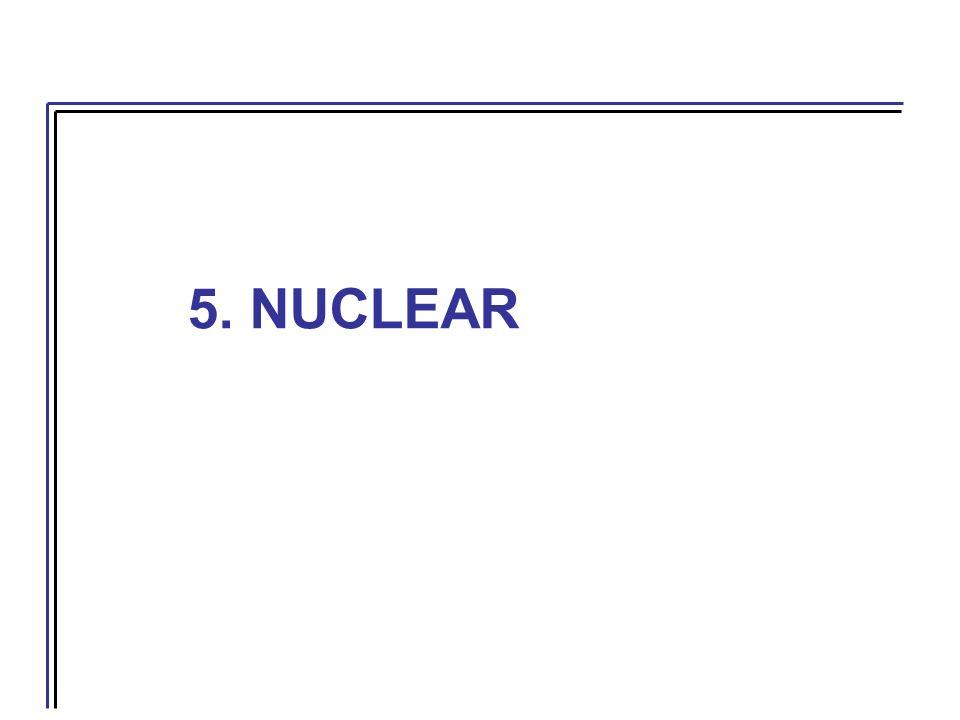 5. NUCLEAR