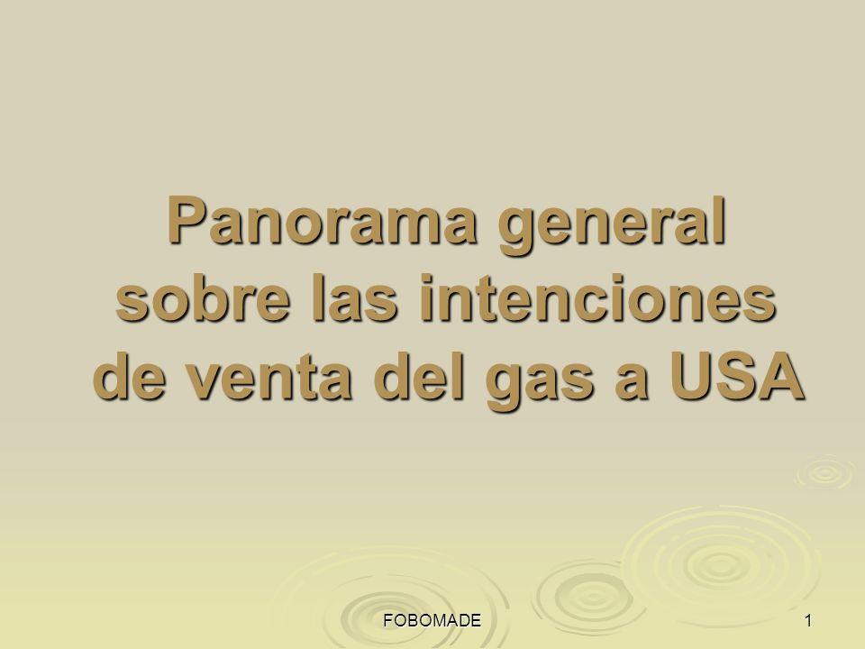 FOBOMADE1 Panorama general sobre las intenciones de venta del gas a USA