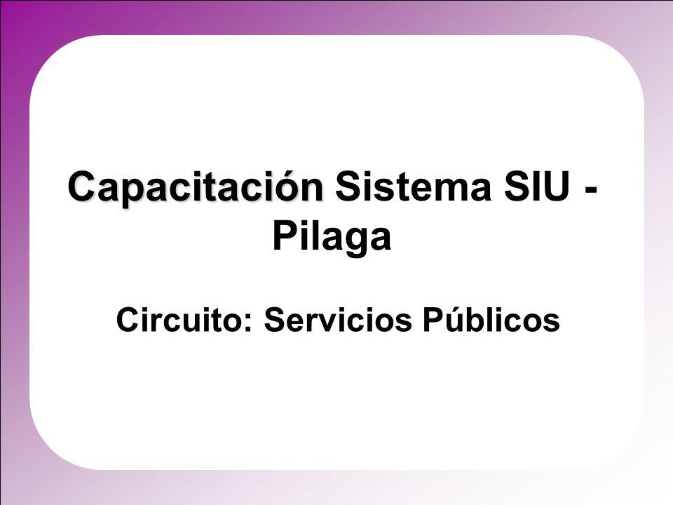 Capacitación Capacitación Sistema SIU - Pilaga Circuito: Servicios Públicos