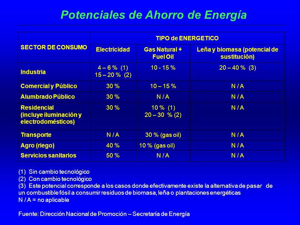 Potenciales de Ahorro de Energía SECTOR DE CONSUMO TIPO de ENERGETICO ElectricidadGas Natural + Fuel Oil Leña y biomasa (potencial de sustitución) Industria 4 – 6 % (1) 15 – 20 % (2) 10 - 15 %20 – 40 % (3) Comercial y Público30 %10 – 15 %N / A Alumbrado Público30 %N / A Residencial (incluye iluminación y electrodomésticos) 30 %10 % (1) 20 – 30 % (2) N / A TransporteN / A30 % (gas oil)N / A Agro (riego)40 %10 % (gas oil)N / A Servicios sanitarios50 %N / A (1) Sin cambio tecnológico (2) Con cambio tecnológico (3) Este potencial corresponde a los casos donde efectivamente existe la alternativa de pasar de un combustible fósil a consumir residuos de biomasa, leña o plantaciones energéticas N / A = no aplicable Fuente: Dirección Nacional de Promoción – Secretaría de Energía
