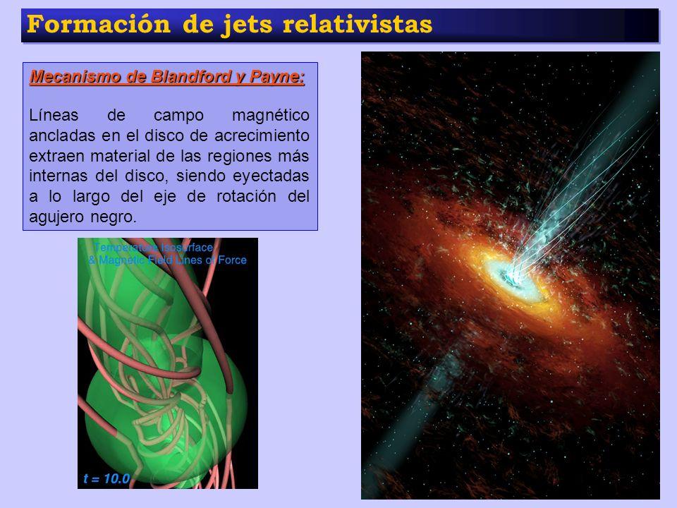 Formación de jets relativistas Mecanismo de Blandford y Payne: Líneas de campo magnético ancladas en el disco de acrecimiento extraen material de las