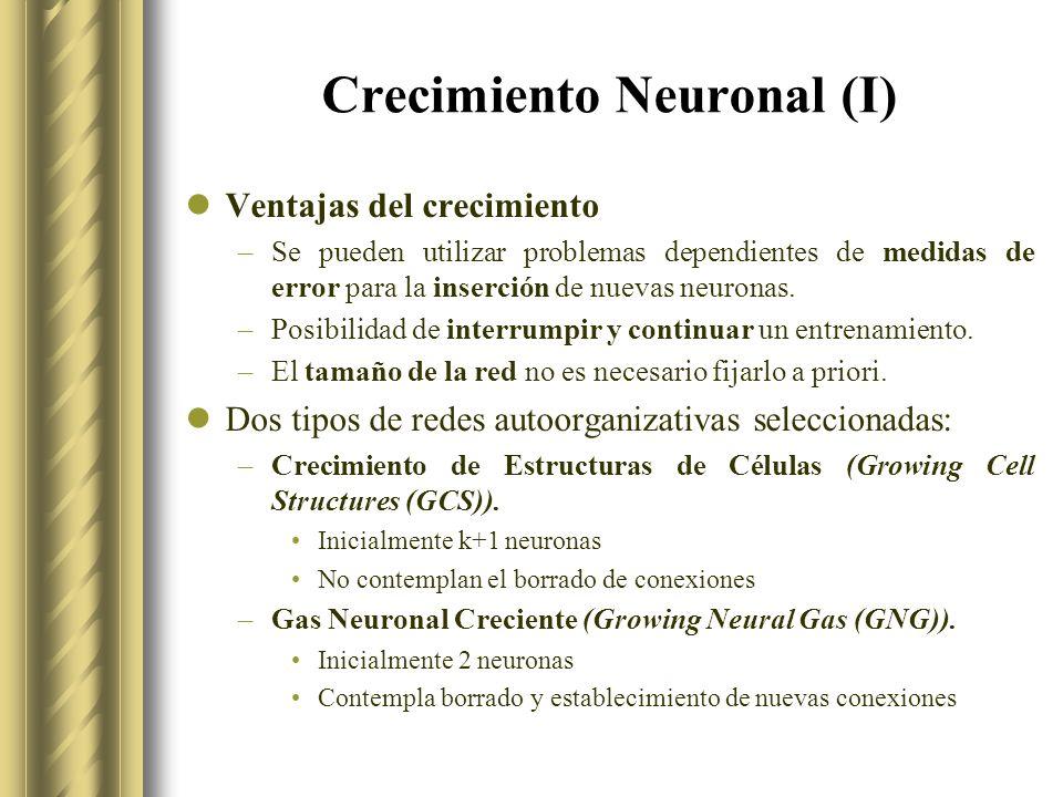 Crecimiento Neuronal (I) Ventajas del crecimiento –Se pueden utilizar problemas dependientes de medidas de error para la inserción de nuevas neuronas.