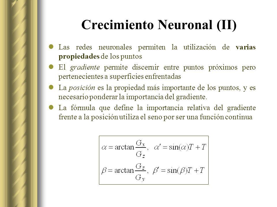Crecimiento Neuronal (II) Las redes neuronales permiten la utilización de varias propiedades de los puntos El gradiente permite discernir entre puntos próximos pero pertenecientes a superficies enfrentadas La posición es la propiedad más importante de los puntos, y es necesario ponderar la importancia del gradiente.