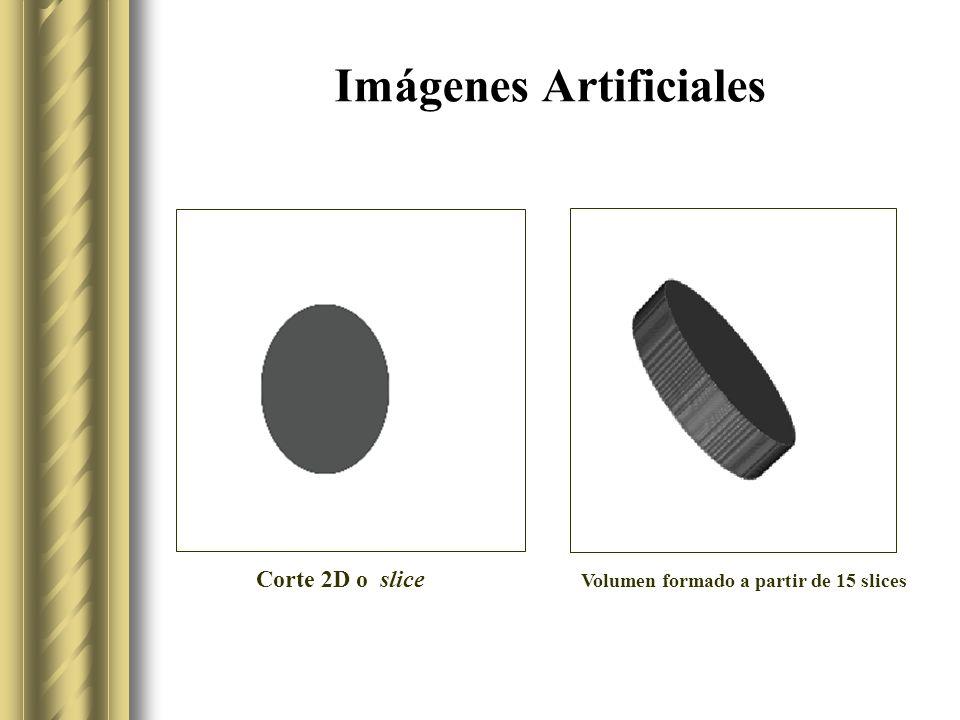 Imágenes Artificiales Volumen formado a partir de 15 slices Corte 2D o slice