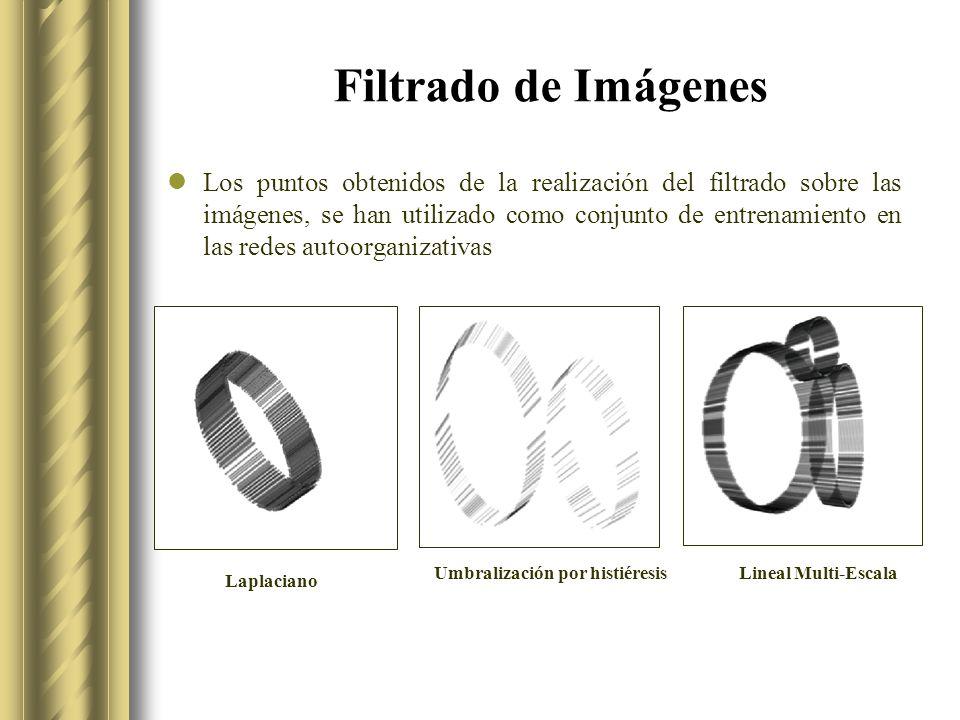 Filtrado de Imágenes Los puntos obtenidos de la realización del filtrado sobre las imágenes, se han utilizado como conjunto de entrenamiento en las redes autoorganizativas Umbralización por histiéresis Laplaciano Lineal Multi-Escala
