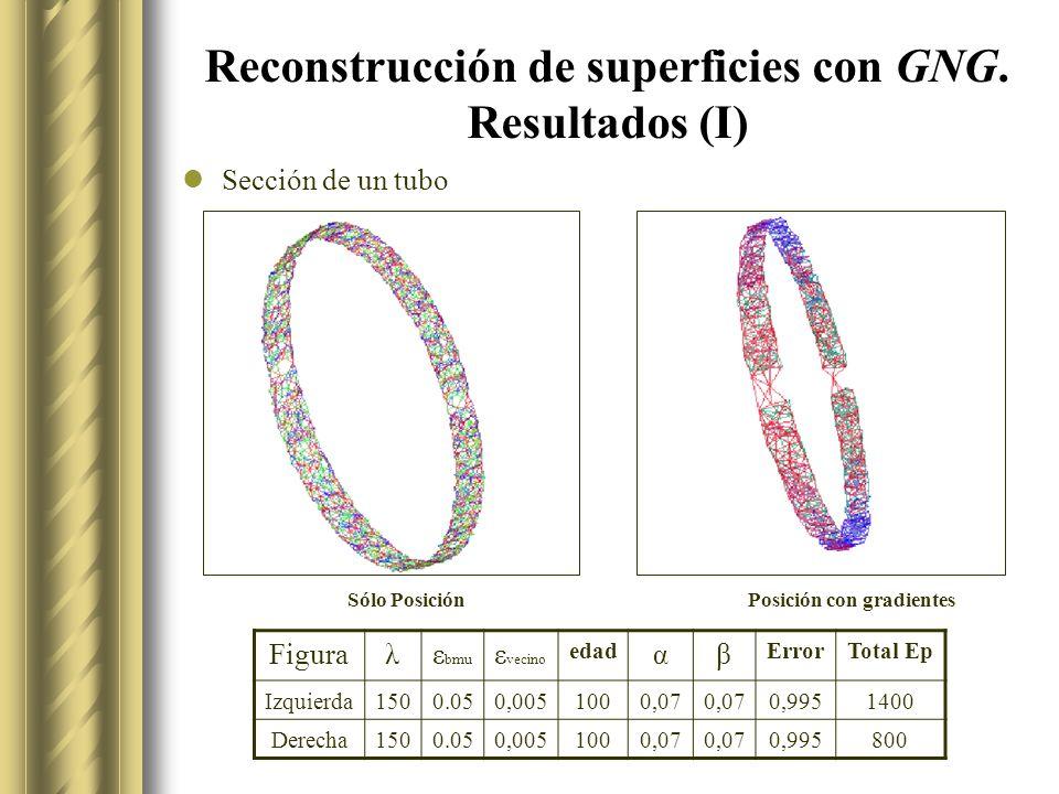 Reconstrucción de superficies con GNG.