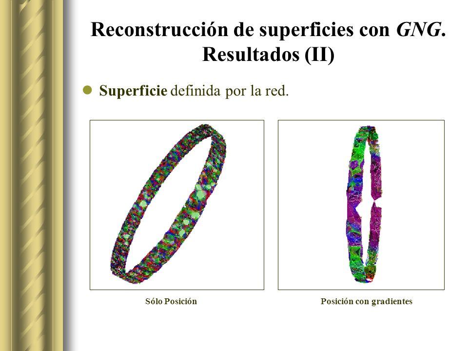 Reconstrucción de superficies con GNG.Resultados (II) Superficie definida por la red.