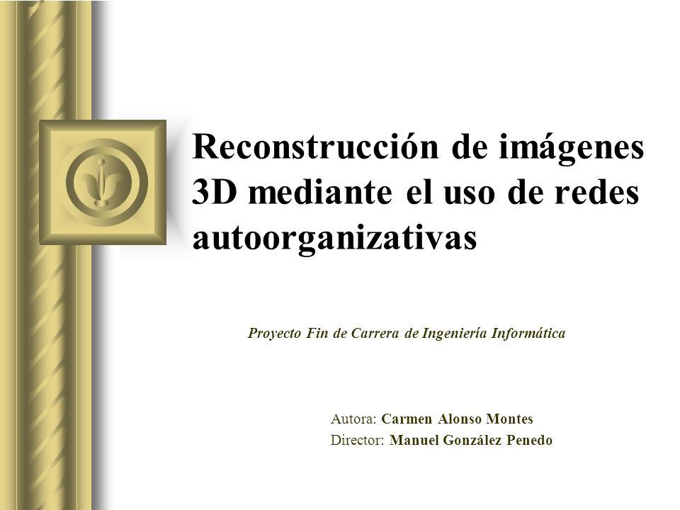 Reconstrucción de imágenes 3D mediante el uso de redes autoorganizativas Autora: Carmen Alonso Montes Director: Manuel González Penedo Proyecto Fin de Carrera de Ingeniería Informática