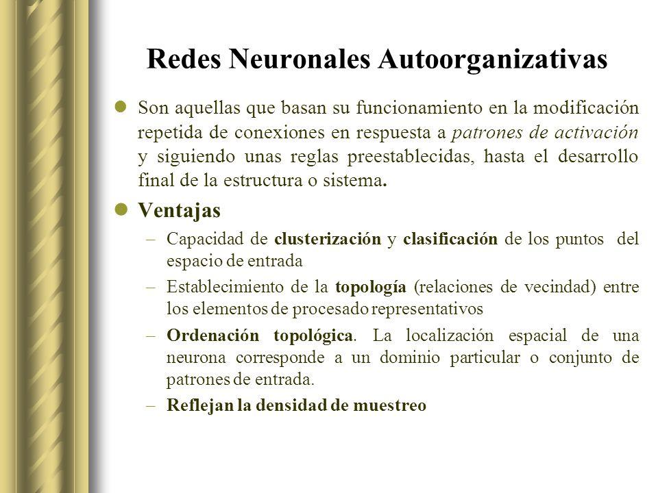 Redes Neuronales Autoorganizativas Son aquellas que basan su funcionamiento en la modificación repetida de conexiones en respuesta a patrones de activación y siguiendo unas reglas preestablecidas, hasta el desarrollo final de la estructura o sistema.