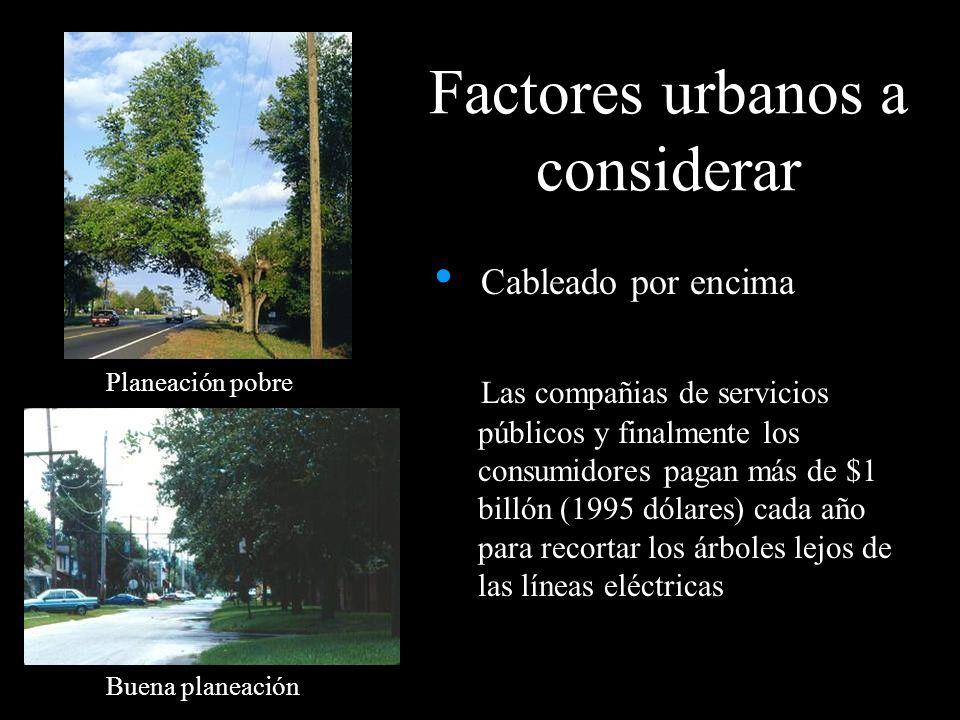 Factores urbanos a considerar Cableado por encima Las compañias de servicios públicos y finalmente los consumidores pagan más de $1 billón (1995 dólar