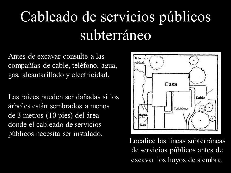 Cableado de servicios públicos subterráneo Antes de excavar consulte a las compañías de cable, teléfono, agua, gas, alcantarillado y electricidad. Las