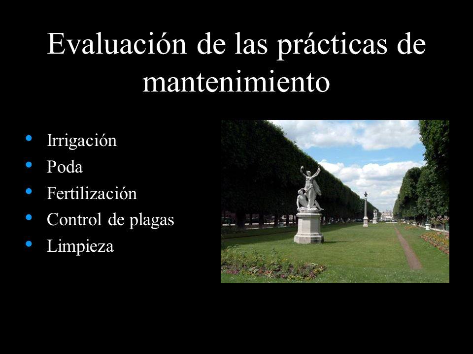 Evaluación de las prácticas de mantenimiento Irrigación Poda Fertilización Control de plagas Limpieza