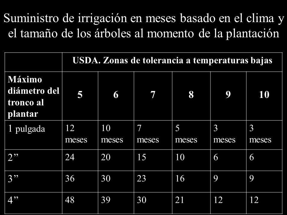Suministro de irrigación en meses basado en el clima y el tamaño de los árboles al momento de la plantación USDA. Zonas de tolerancia a temperaturas b