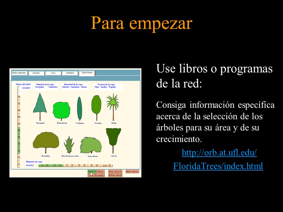 Use libros o programas de la red: Consiga información específica acerca de la selección de los árboles para su área y de su crecimiento. http://orb.at