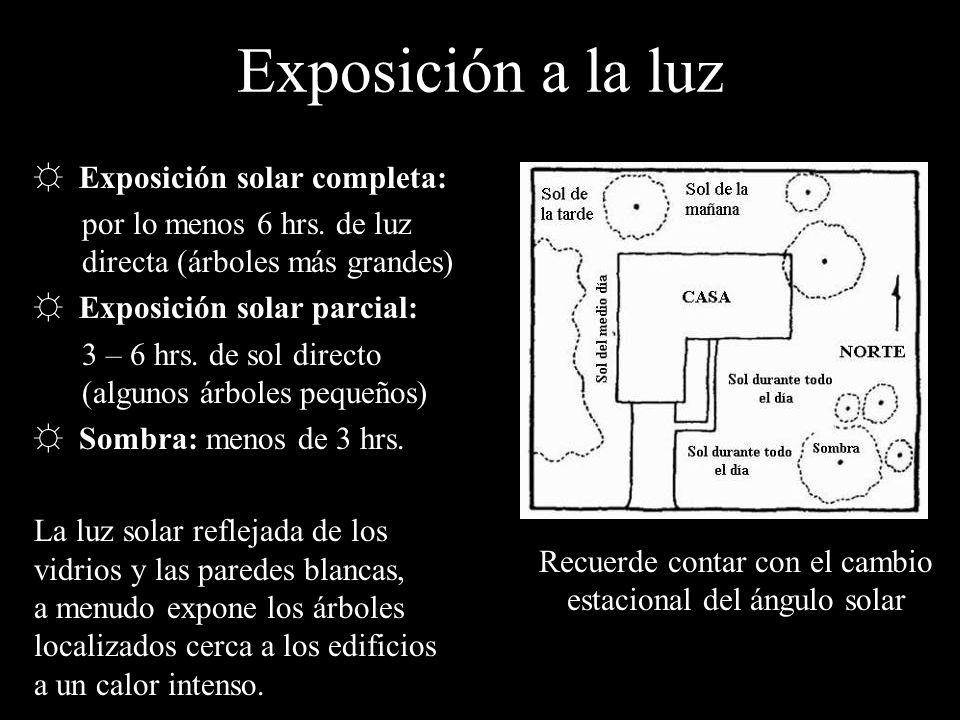 Exposición a la luz Exposición solar completa: por lo menos 6 hrs. de luz directa (árboles más grandes) Exposición solar parcial: 3 – 6 hrs. de sol di