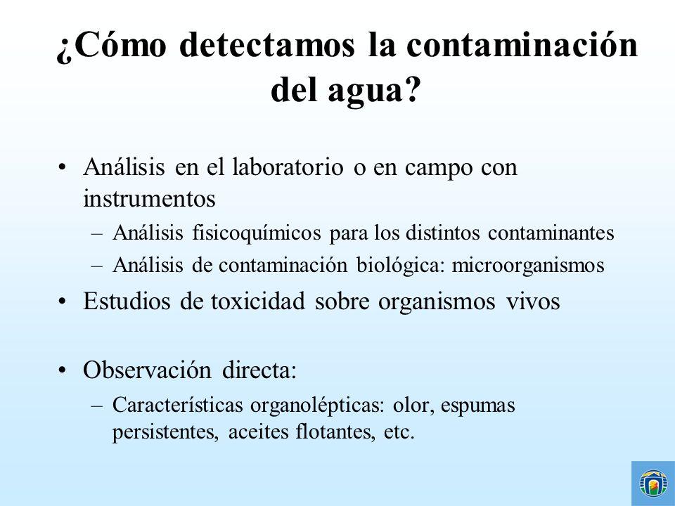 ¿Cómo detectamos la contaminación del agua? Análisis en el laboratorio o en campo con instrumentos –Análisis fisicoquímicos para los distintos contami