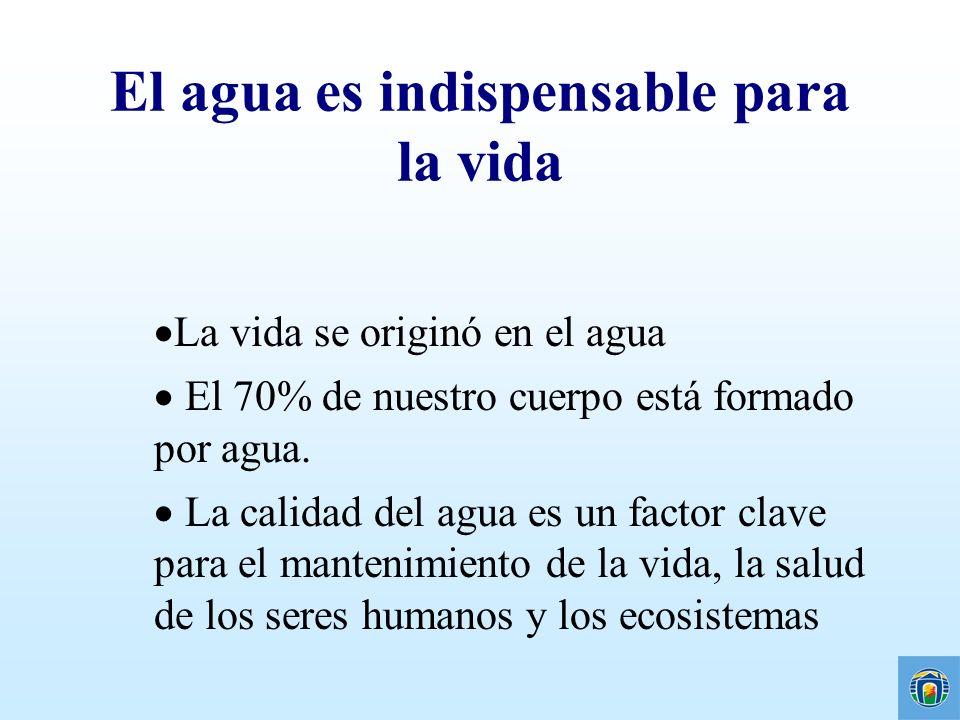 Cuenca del Aº Miguelete A.Miguelete J. M.- Gutierrez 8 ESTACIONES DE MONITOREO M1 – O.