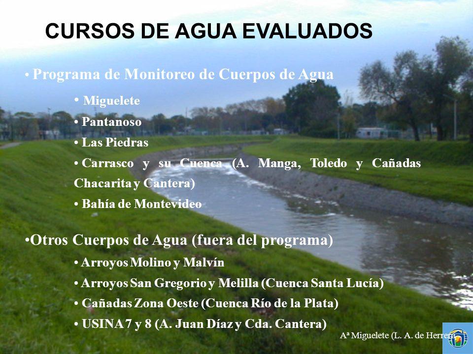 Programa de Monitoreo de Cuerpos de Agua Miguelete Pantanoso Las Piedras Carrasco y su Cuenca (A. Manga, Toledo y Cañadas Chacarita y Cantera) Bahía d