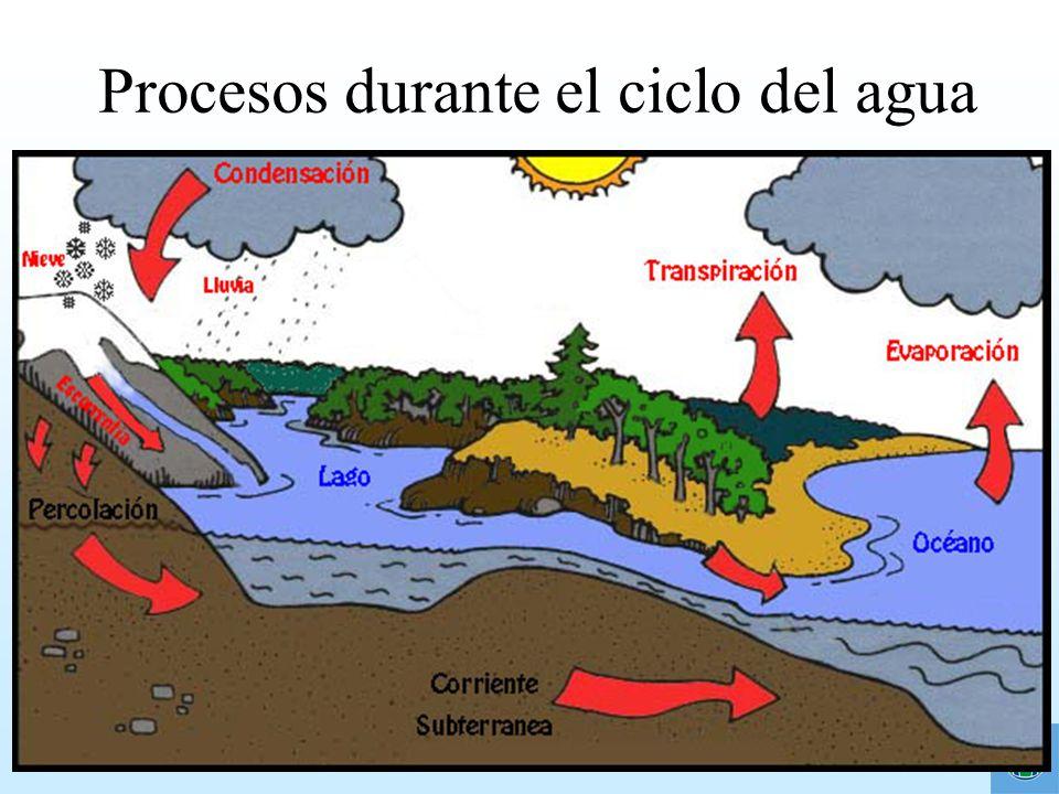 ¿Cómo detectamos la contaminación del agua.