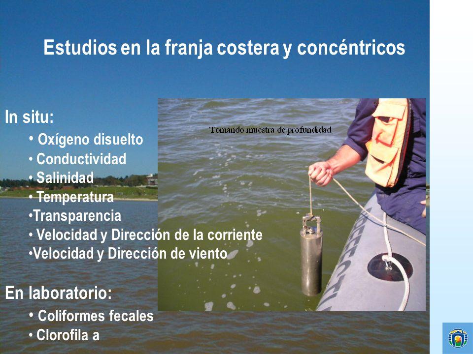 Estudios en la franja costera y concéntricos In situ: Oxígeno disuelto Conductividad Salinidad Temperatura Transparencia Velocidad y Dirección de la c