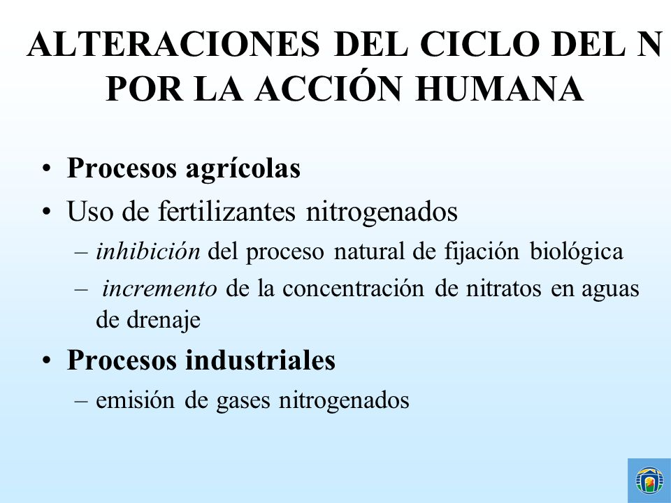 Alteraciones del Ciclo del nitrógeno por la acción humana Pérdidas gaseosas a la atmósfera Residuos orgánicos Combustión de combustibles fósiles Precipitación Residuos de ganado e industriales Fertilizantes Nitratos (NO 3 - ) Nitritos (NO 2 - ) Amonio (NH4 + ) N-orgánico R-NH2 Denitrificación Mineralización Fijación natural Abs.