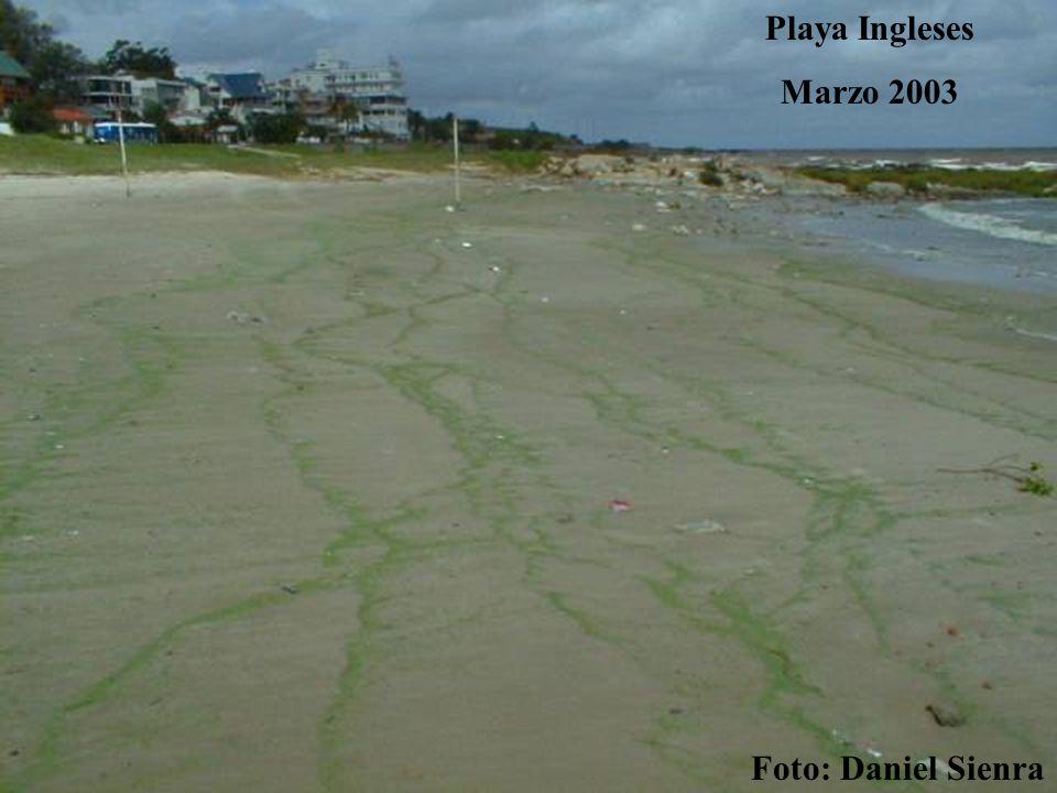 Playa Ingleses Marzo 2003 Foto: Daniel Sienra