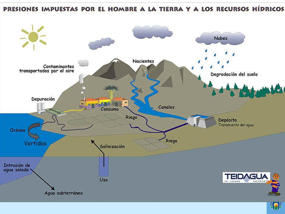 ¿Qué es la contaminación del agua.