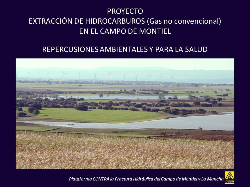 PROYECTO EXTRACCIÓN DE HIDROCARBUROS (Gas no convencional) EN EL CAMPO DE MONTIEL REPERCUSIONES AMBIENTALES Y PARA LA SALUD Plataforma CONTRA la Fract