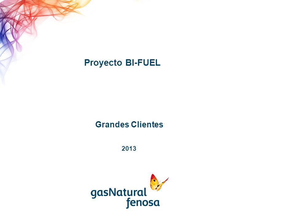 Proyecto BI-FUEL 2013 Grandes Clientes