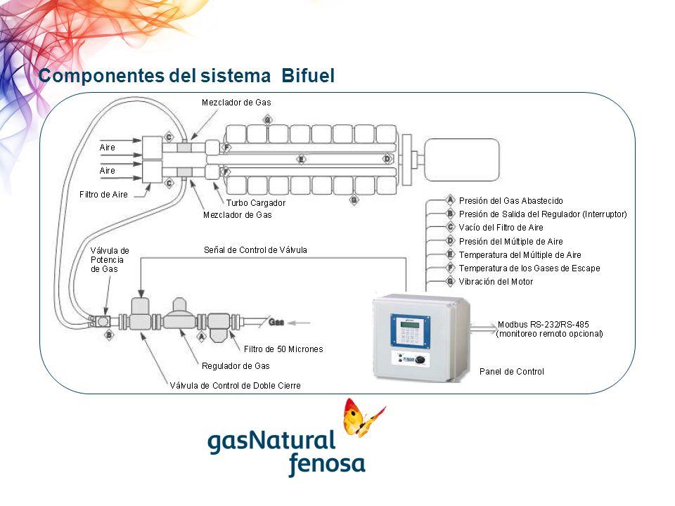 Montajes en motores el sistema Bifuel