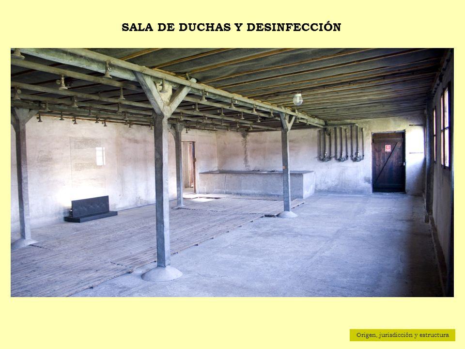 Origen, jurisdicción y estructura SALA DE DUCHAS Y DESINFECCIÓN